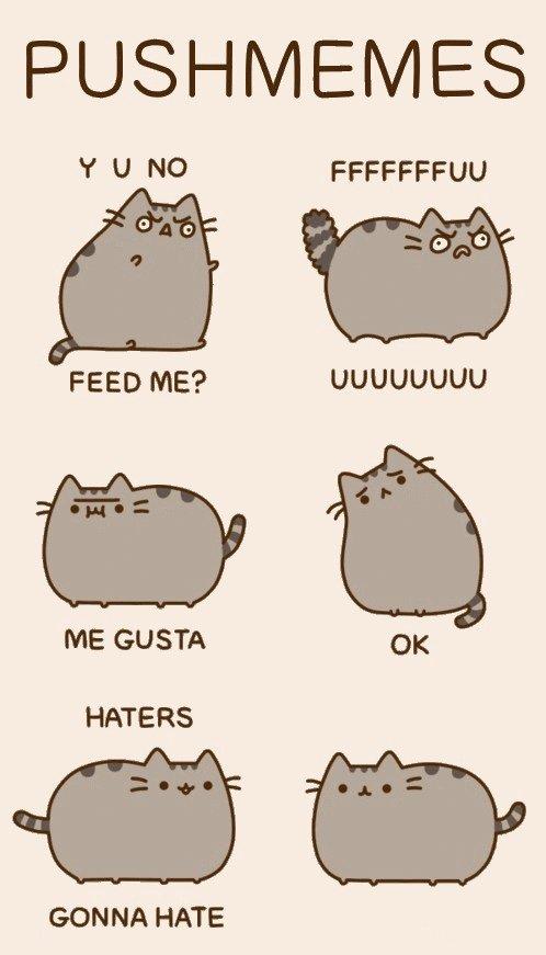 Коты pusheen