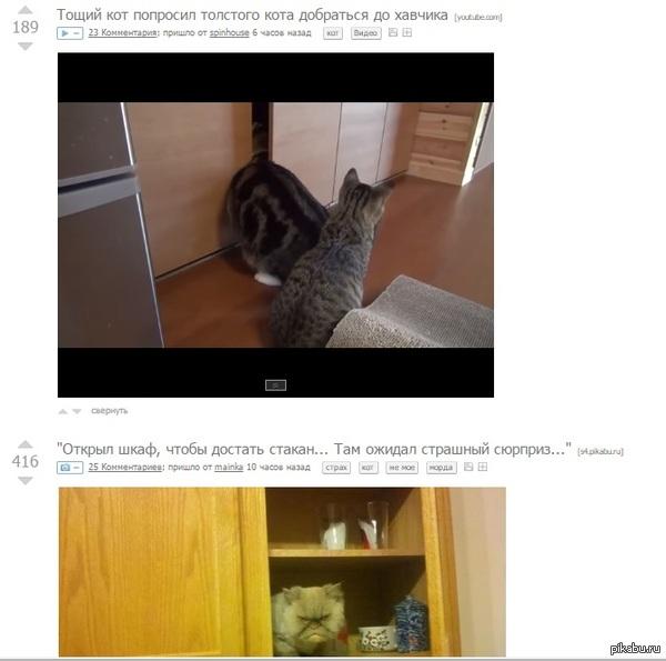 Совпадение В первом видео котан спрятался в шкафу