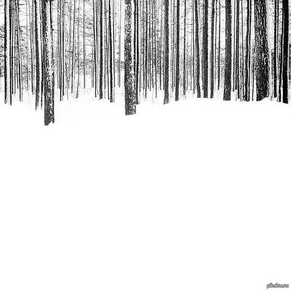Зимний минимализм