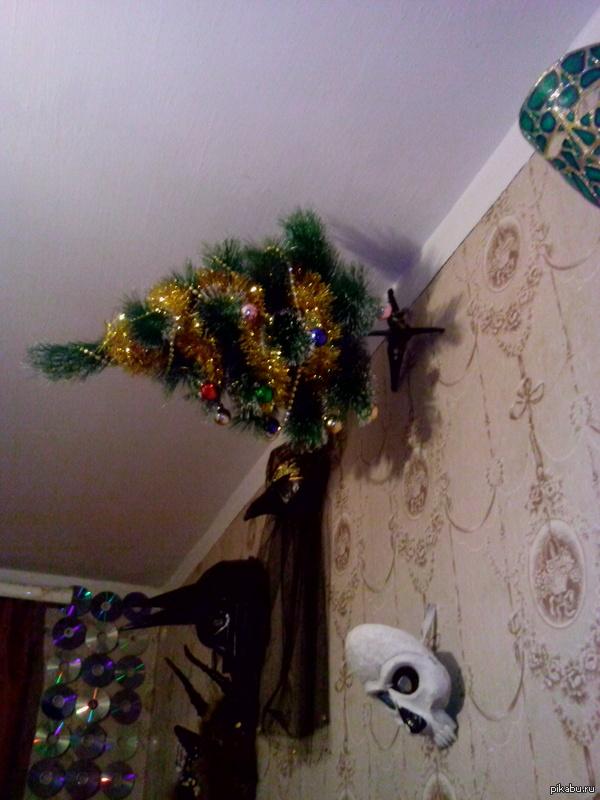 Перпендикулярная елка. За пять минут коты опрокинули елку четыре раза. Пришлось спасать  праздник.