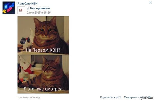 "А кот то уже вышел за пределы пикабу Кот из <a href=""http://pikabu.ru/story/otchet_po_novomu_godu_2955910"">http://pikabu.ru/story/_2955910</a>"