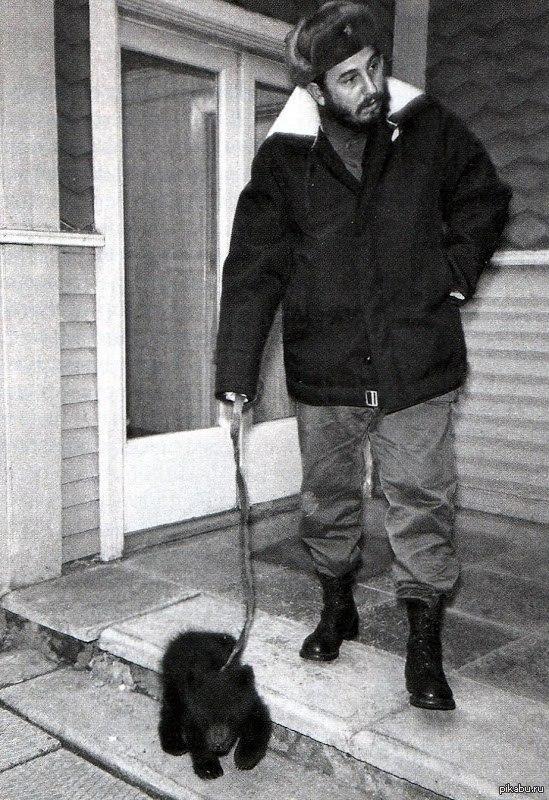 Фидель Кастро с подаренным ему медвежонком, Иркутск, 1963