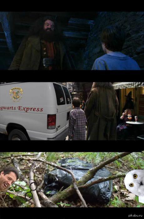 Не будет больше вашего этого, Гарри Поттера!