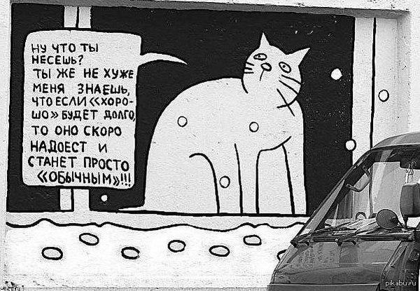 Кот херни не скажет.