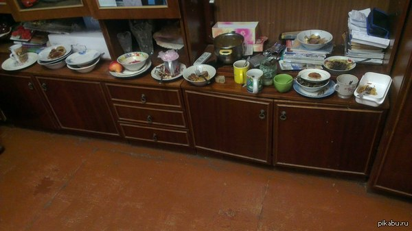 Я обещала выложить, если не помоешь посуду? Пусть твои друзья на Пикабу посмотрят, надеюсь, что когда придешь, тебе станет стыдно!
