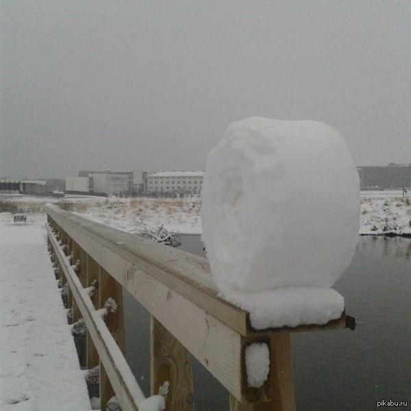 Снежный ролл.