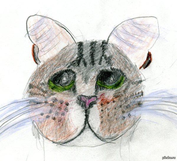 Я знаю рукожопство! Мне 11 лет,рисовала кота......не получилось,НО есть что то и хорошее...