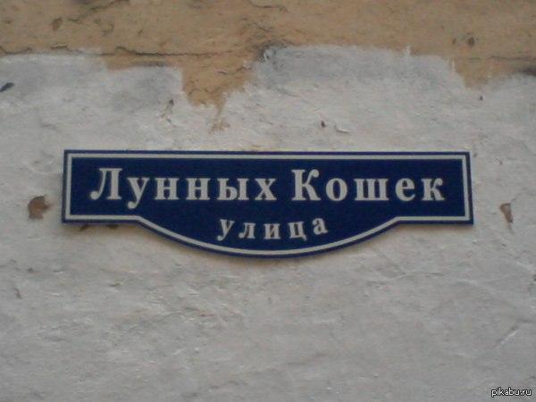 Одна из прекраснейших улиц Петербурга ;)