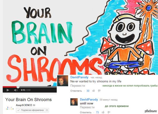 Наука... Довольно агитирующее видео получилось, как оказалось