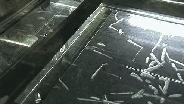 """Газ радон в диффузионной камере Превьюшка следующего выпуска """"Радиация"""" от меня."""
