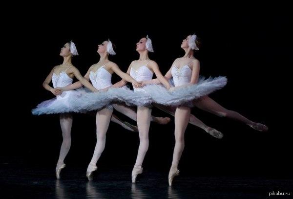 """Балету """"Лебединое озеро"""" исполняется 120 лет. Одному из символов русского искусства, знаменитому балету «Лебединое озеро» исполняется 120 лет. Постановка была представлена в Мариинском театре в 1895 году."""