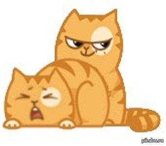 Горячие котики клубничку?