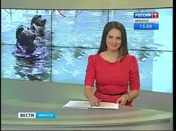 Морские котики России