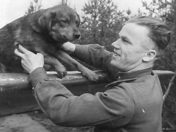 Трижды герой Советского Союза Иван Никитович Кожедуб с питомцем своего полка. Великая отечественная война. Видимо хорошо кормили собак в его полку)