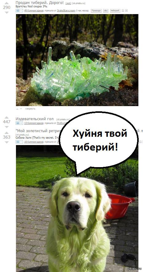 """Комментарии К посту <a href=""""http://pikabu.ru/story/prodam_tiberiy_dorogo_3381371"""">http://pikabu.ru/story/_3381371</a>"""