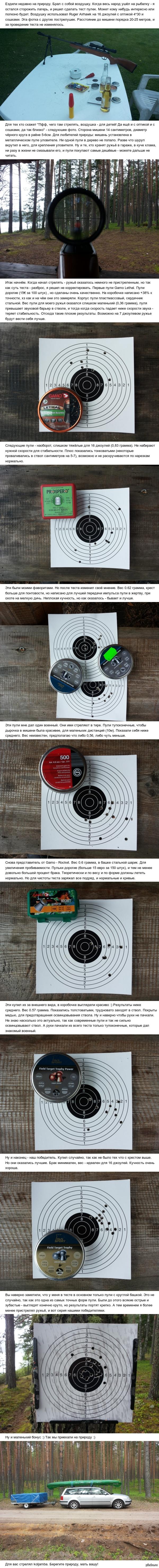 Сравнительный тест пулек для воздушки