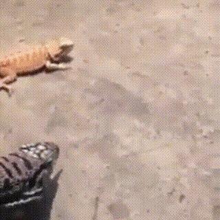 Когда начальник пришел недовольный после долгого совещания и уже конец рабочего дня