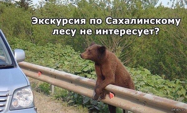 Сахалинские гиды :) А какой гид у тебя ?)