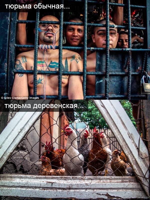 Онлайн смотреть трахнули в тюрьме