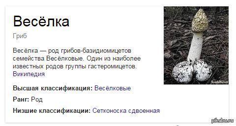 "Решил почитать про гриб из поста ниже поподробнее. <a href=""http://pikabu.ru/story/interesnyie_faktyi_o_gribakh_3605604"">http://pikabu.ru/story/_3605604</a>"
