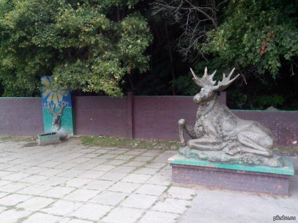 достаточно крупный описание памятника посвященному лосю объявления