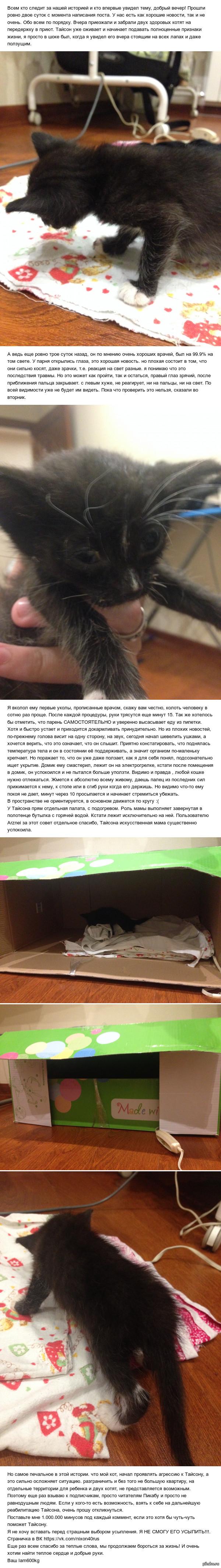 "Маленькая история, маленького бойца (Часть 2) Продолжение поста <a href=""http://pikabu.ru/story/malenkaya_istoriya_malenkogo_boytsa_3621930"">http://pikabu.ru/story/_3621930</a>"
