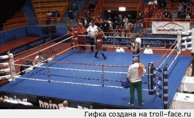Боксёр в синем отправился за подмогой