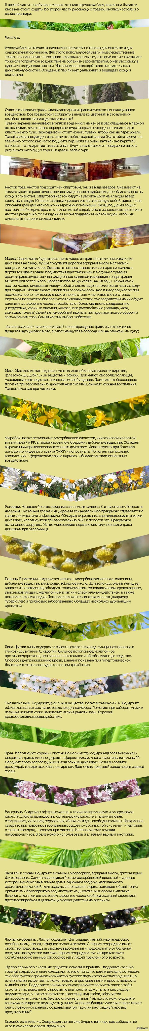Советы массажиста. Русская баня. Часть 2.