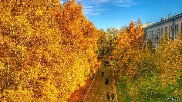 Осень в одном из университетов Иркутска.