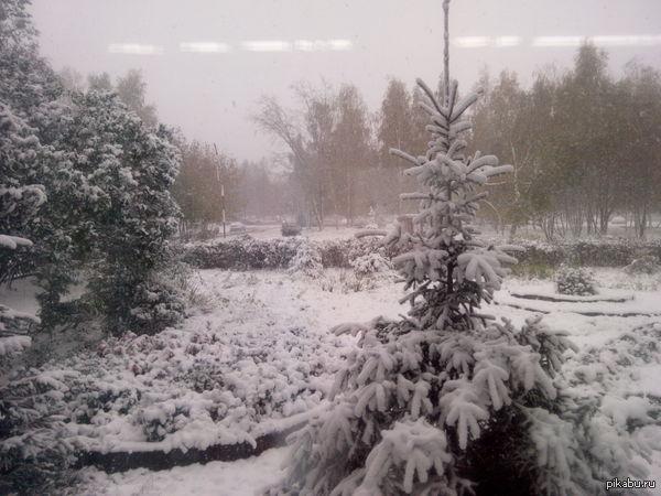 У нас тоже снежок Набережные Челны,Татарстан(dns s4704)