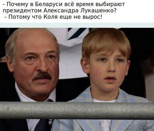 Выборы в Республике Беларусь Взято из ВК