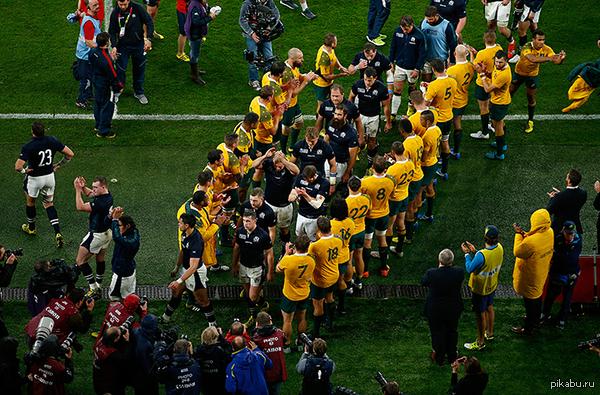 Уважение к сопернику. Вот так провожали с поля игроки сборной Австралии проигравших сенсационно и выбывших из турнира игроков сборной Шотландии в 1/4 финала Кубка мира по регби.