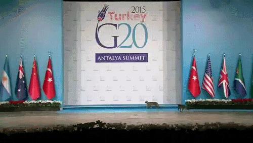 Неожиданные гости на саммите большой двадцатки в Турции