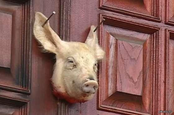 На дверь турецкого посольства прибили отрезанную свиную голову