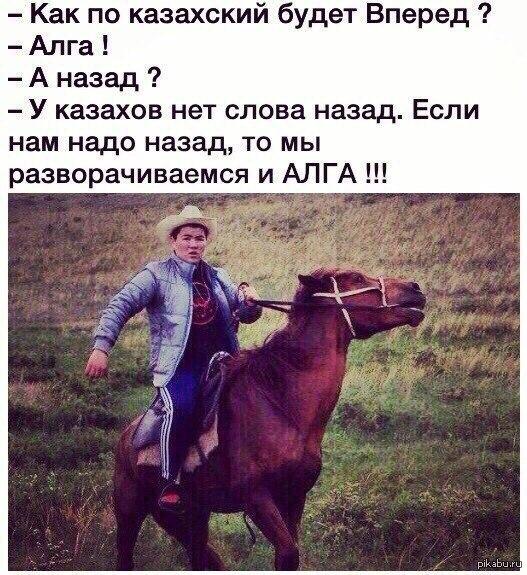 Музыкой для, прикольные картинки казахские