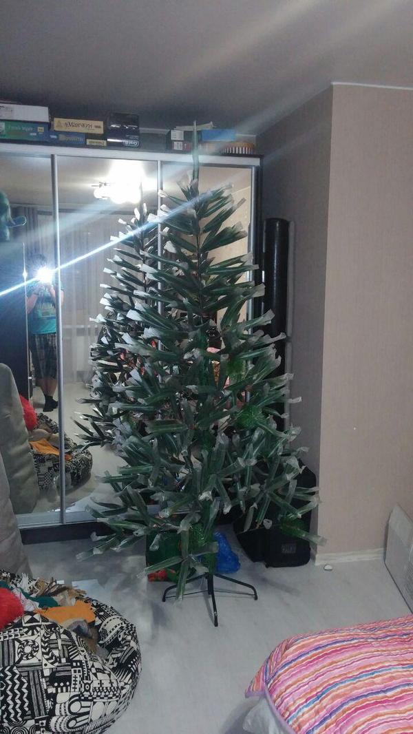 Купили елку.. Новый Год, Ёлка