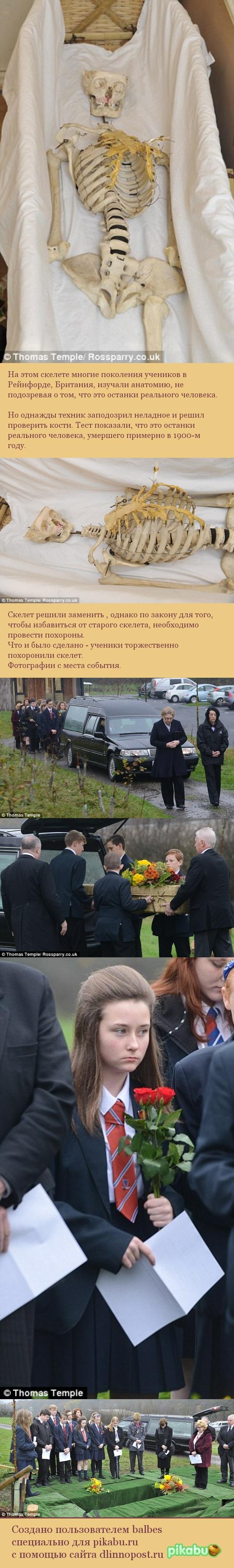 Похороны учебного скелета. Похороны, Великобритания, Длиннопост