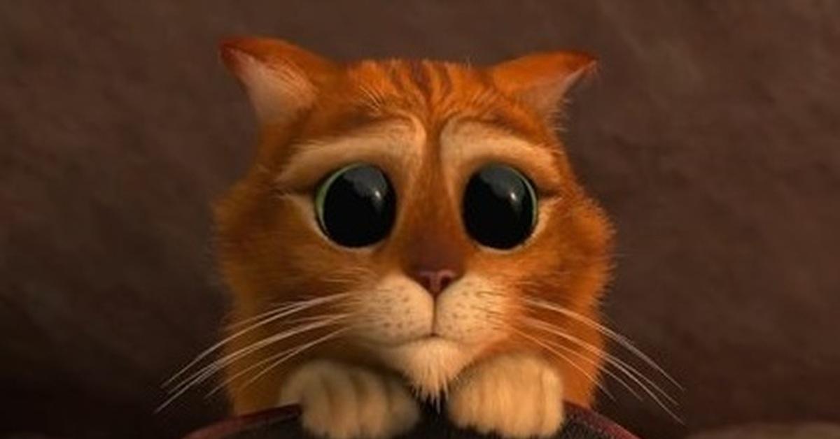 сожалению, фото кота из шрека с грустными глазами фото какие