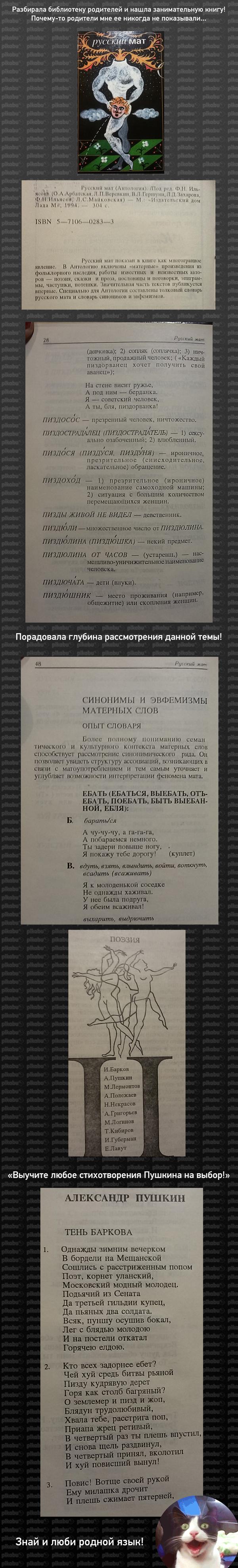 Знай и люби родной язык! Мат, Ильясов, Пушкин, Русская литература, Длиннопост