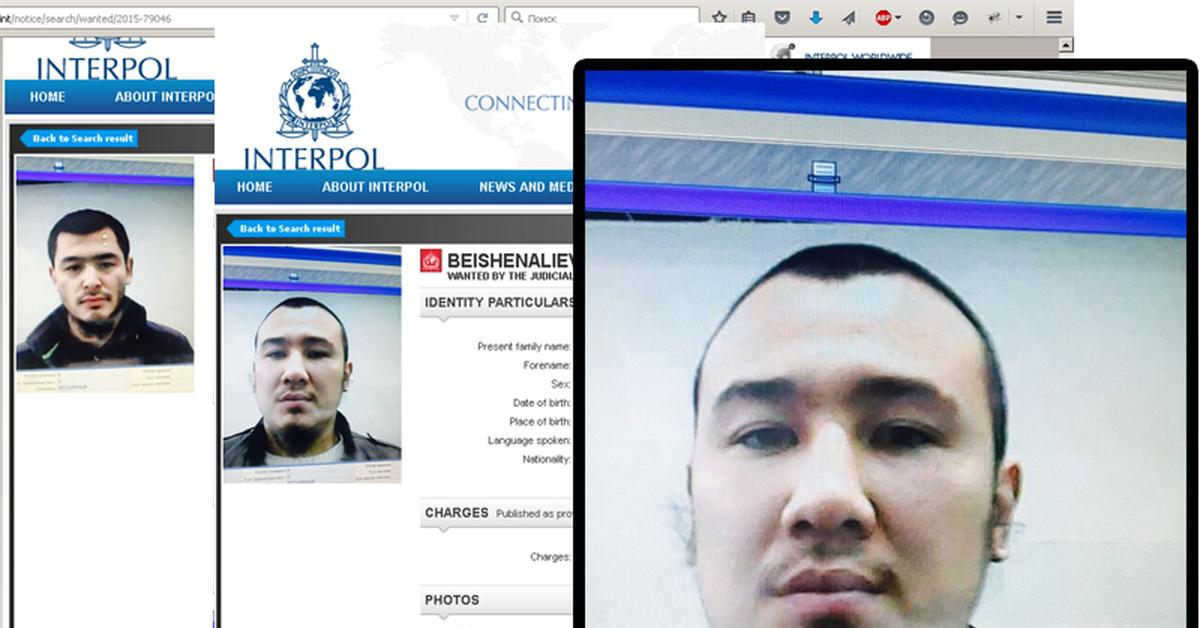 знакомства interpol
