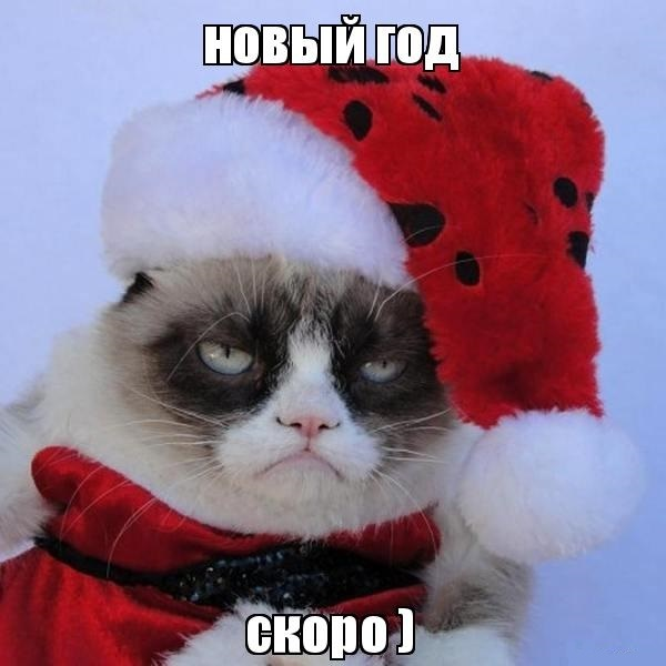 Хочешь праздника? Стань им! Новый Год, Дед Мороз, Праздники, Конфеты, Лига Добра, Длиннопост