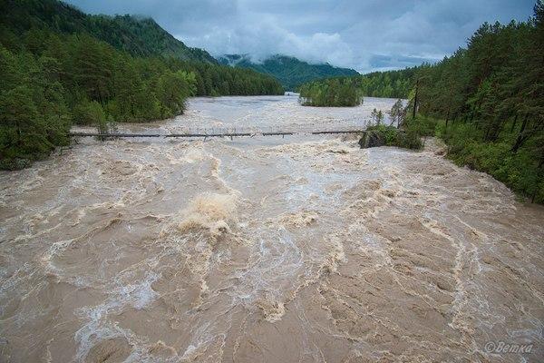 Половодье в горной местности, это страшно... Горный Алтай, Наводнение, 2014, видео, длиннопост