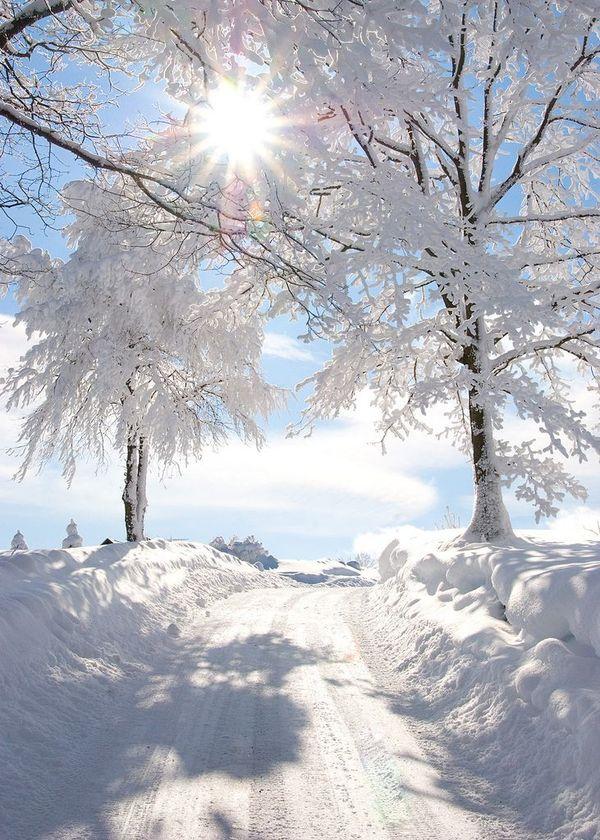 Зимний день ...