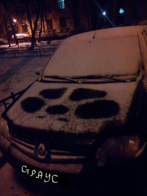 """Как на нашем на дворе"" К пятничному тегу. Страус, Машина, Снег"