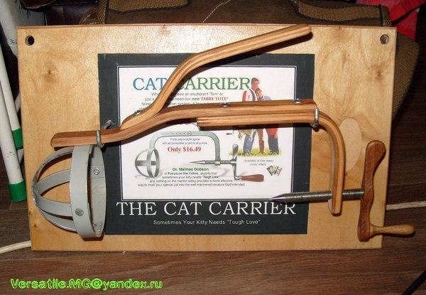 Переноска для котов, действующий образец Кот, Переноска, Я дождался, Shut up and take my money