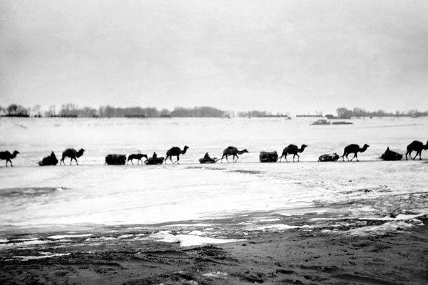 Как Америка голодных крестьян кормила Америка, СССР, Голод, Крестьяне, 1920-е, Длиннопост