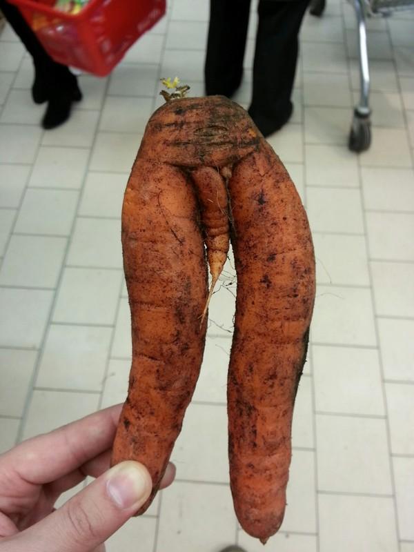 "Морковь ""созрел"" Морковь, Гениталии, Фото, Овощи"