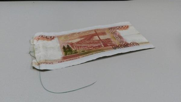 Монетка на нитке на новый лад Мошенники, Платежные терминалы