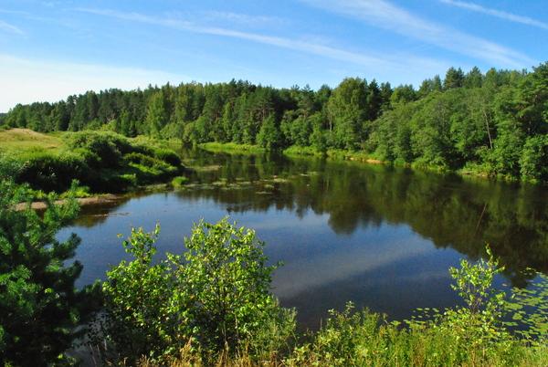 Верхнее течение Волги и устье речки Большая Коша