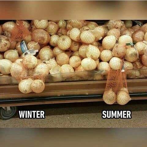 Зима / Лето